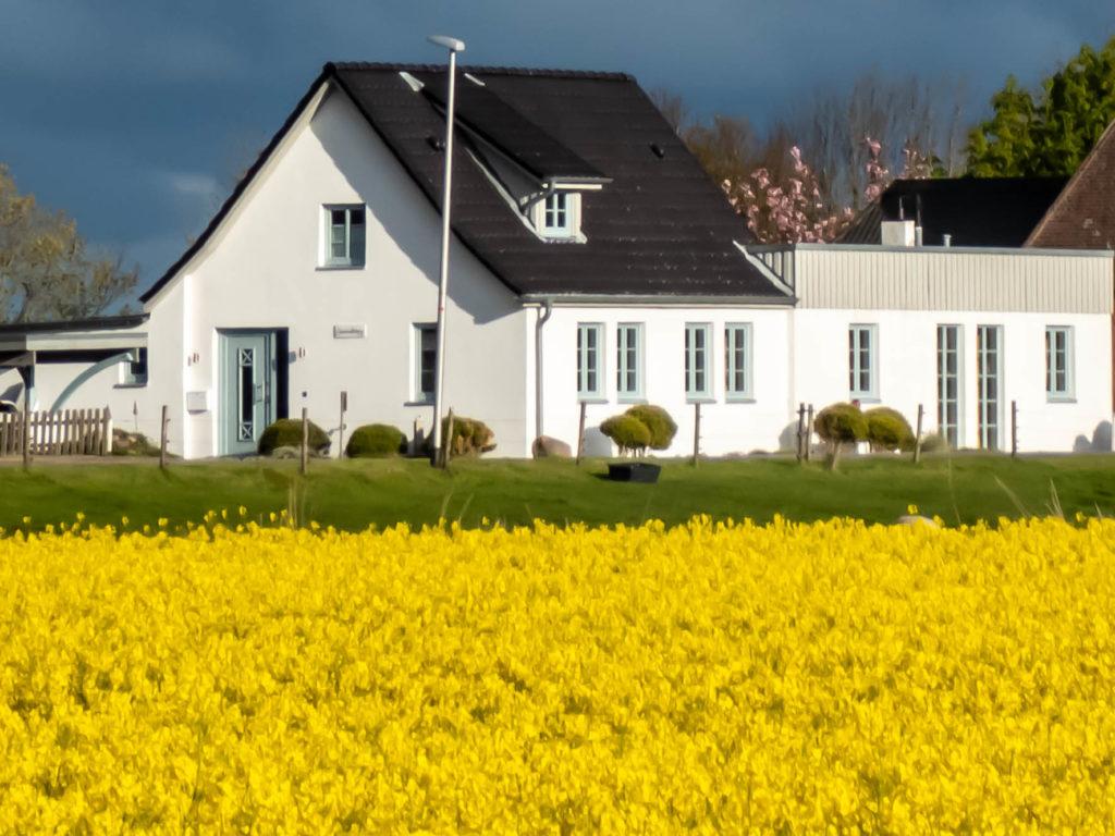 Ferienhaus Nordstrand Ferienwohnung Reynders